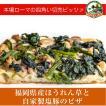 福岡県産ほうれん草と自家製塩豚のピザ[冷凍pizza お取り寄せ イタリアン]
