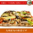 九州産旬の野菜ピザ[冷凍pizza お取り寄せ イタリアン]