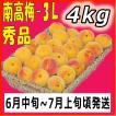 南高梅秀品3L-4kg梅干・梅酒・他、有機肥料使用/紀州和歌山県産青梅