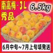 南高梅3L6.5kg和歌山県産