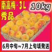 南高梅秀品3L-10kg梅干・梅酒・他、有機肥料使用/紀州和歌山県産青梅