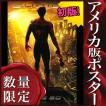 映画ポスター スパイダーマン2 グッズ /アメコミ アート おしゃれ フレームなし 約69×102cm /選択 ADV-DS