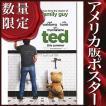 映画ポスター テッド (ted グッズ) /ADV-DS