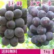巨峰&ピオーネ ぶどう 送料無料 ギフト 1kg