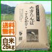 新米 コシヒカリ 令和元年産 白米 26kg コウノトリ育む農法 送料無料 お米 兵庫県産