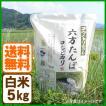 新米 コシヒカリ 令和元年産 白米 5kg コウノトリ育む農法 送料無料 お米 兵庫県産