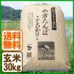 新米 コシヒカリ 令和元年産 玄米 30kg こうのとり米 送料無料 兵庫県産