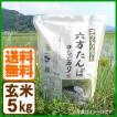 新米 コシヒカリ 令和元年産 玄米 5kg こうのとり米 送料無料 兵庫県産