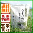 玄米 農薬不使用 コシヒカリ10kg 令和2年産 こうのとり米 送料無料 兵庫県産