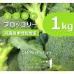 ブロッコリー 農薬90%カット 特別栽培【1kg】