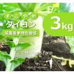 ダイコン 大根 農薬90%カット 特別栽培【3kg】