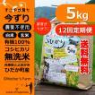 【新米】定期購入5kgx12回 令和元年産 玄米 白米 今ずり米 無洗米 農薬不使用 コシヒカリ