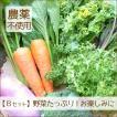 野菜 詰め合わせ 納得セット 農薬不使用 訳あり 不揃い 送料無料