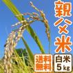 ホワイトデー コシヒカリ 5kg 白米 親父米 兵庫県産  平成29年産 送料無料