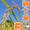 コシヒカリ 10kg 白米 親父米 兵庫県産 令和元年産 送料無料