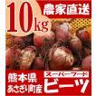 有機 ビーツ 10kg 熊本県産 野菜 栄養 予約販売