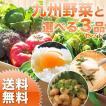 野菜セット 九州野菜+選べる3品セット 九州野菜 卵 納豆