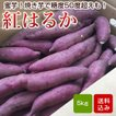紅はるか 5kg A品(洗い)鹿児島産 べにはるか さつまいも  さつま芋