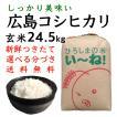 コシヒカリ玄米24.5kg令和2年産 選べる分づき 白米・ 7・5・3・1分づき 送料無料 最安値 ひろしまのお米