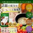 酵素 ダイエット サプリ 生酵素 403種野菜発酵エキス ...
