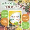 酵素 サプリメント ダイエット 酵母 サプリ 酵素のチカラ コエンザイムQ10 送料無料 60粒 30日分