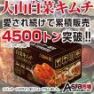 今だけ2280円!白菜キムチ10kg
