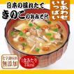 フリーズドライ 味噌汁 無添加 日本の採れたて きのこのおみそ汁 9.2g×10袋