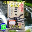 阿蘇こしひかり無洗米10Kg白米 5Kg×2    (九州の米、熊本の米)