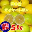 熊本産,マイヤーレモン,5K   (国産,九州,熊本より)