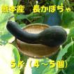 減農薬、長かぼちゃ、5k、4〜5個 (九州、熊本より)