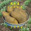 ジャガイモ10Kg(メークイン、40〜60個)(九州、熊本)