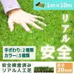 人工芝 芝生 色までリアルなロール人工芝 芝丈20mm (幅1m × 長さ10m) 安全検査実施済