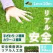 人工芝 芝生 色までリアルなロール人工芝 芝丈30mm (幅1m × 長さ10m) 安全検査実施済
