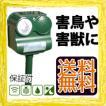 【在庫有】害鳥・害獣撃退ロボット ビッグバン BIGBANG-108