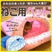 猫 ベッド ハウス ドーム 子猫 ペット 暖かい 冬 おしゃれ 室内用 テント キャットハウス あったか クッション付 ペットハウス ふかふか 寒さ対策
