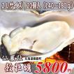 北海道仙鳳趾産・生牡蠣(カキ)2Lサイズ20個(殻付き 生食)/1個130〜180g