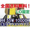 H4 LO固定 55W 10000K / 薄型バラスト / 保証付きト / 防水加工