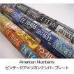 IG-10520【オックス】American Numberrsアメリカンナンバーズ ◆◆(数量×50cm)【C2-6】U2 M1.5