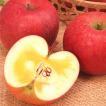2020予約サンふじ 5kg箱 信州 松川町 リンゴ 林檎