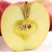 2020年度予約 ふじリンゴ 5kg箱 信州かなえちゃん農園 りんご 林檎 長野 ミールキット