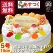 誕生日ケーキ バースデーケーキプレート DXデコ 生クリーム 5号 15cm