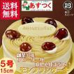 誕生日ケーキ バースデーケーキ プレート付 モンブラン5号 15cm