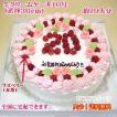 大きい誕生日ケーキNo,122/オーダーケーキ/パーティーケーキ/還暦祝いケーキ