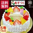 誕生日ケーキ バースデーケーキ プレート 動物菓子2個付/リースデコ生クリームケーキ5号15cm