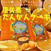 屋久島たんかんケーキ 20個入り