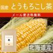 とうもろこし茶 北海道産100%☆大佐小町 鉄分と食物繊維が豊富!!3g×30p【メール便送料無料・代引き不可】