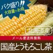 健康茶 北海道産とうもろこし茶 3g×100p バク盛り(メール便送料無料・代引き不可)