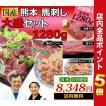 馬刺し 馬肉 熊本 国産 大盛セット 800g