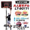 バスケットゴール ライフタイムLT-90171【バックボ ードを有効に使った練習可能  ミニバスから公式サイズまで対応】