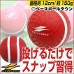 野球 スローイングマスター キャッチボール イップス ウォーミングアップ ピッ チング 投球 練習用用品 FPG-5 フィールドフォース